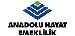 https://www.anadoluhayat.com.tr/